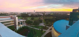 University of South Florida 2