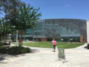University of South Florida 1