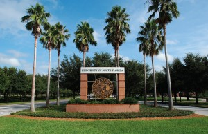 university-of-south-florida-4